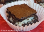 Dark Chocolate Coconut Brownies