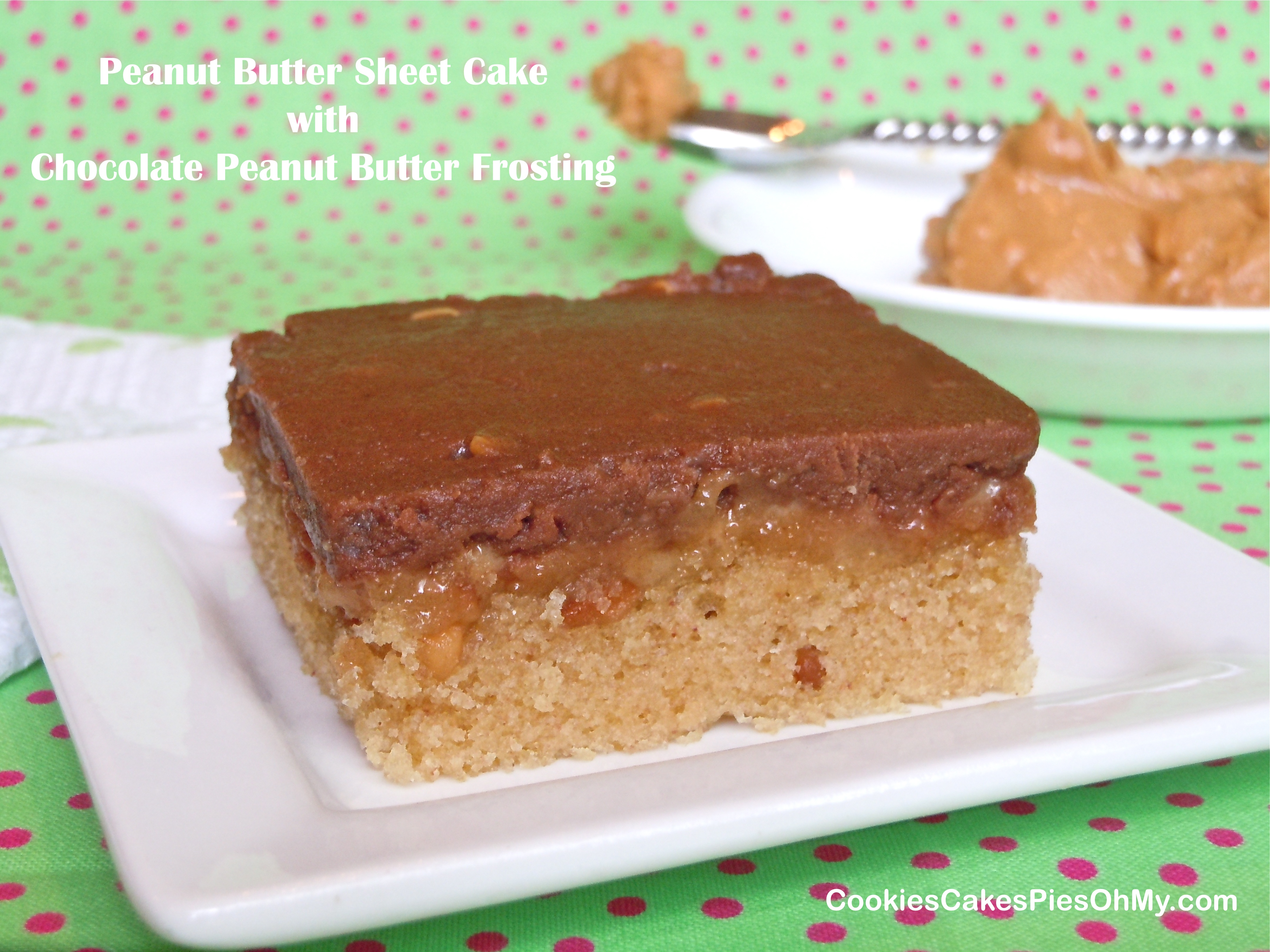 Peanut Butter Sheet Cake with Chocolate Peanut Butter Frosting ...