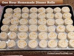 One Hour Homemade Dinner Rolls 3
