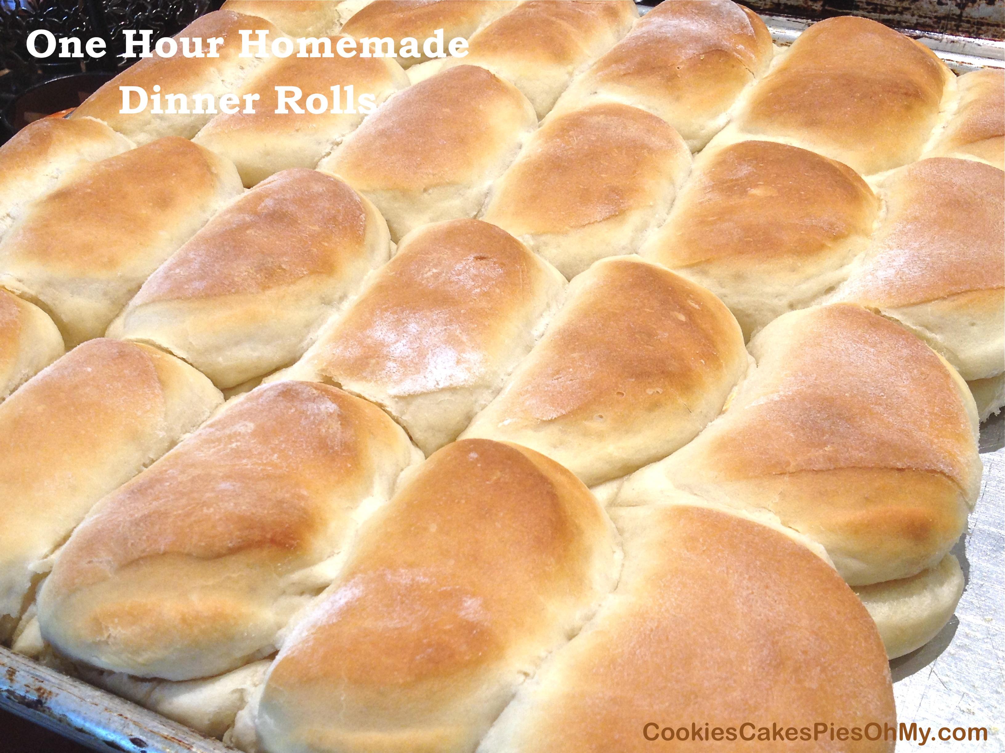 One Hour Homemade Dinner Rolls | CookiesCakesPiesOhMy