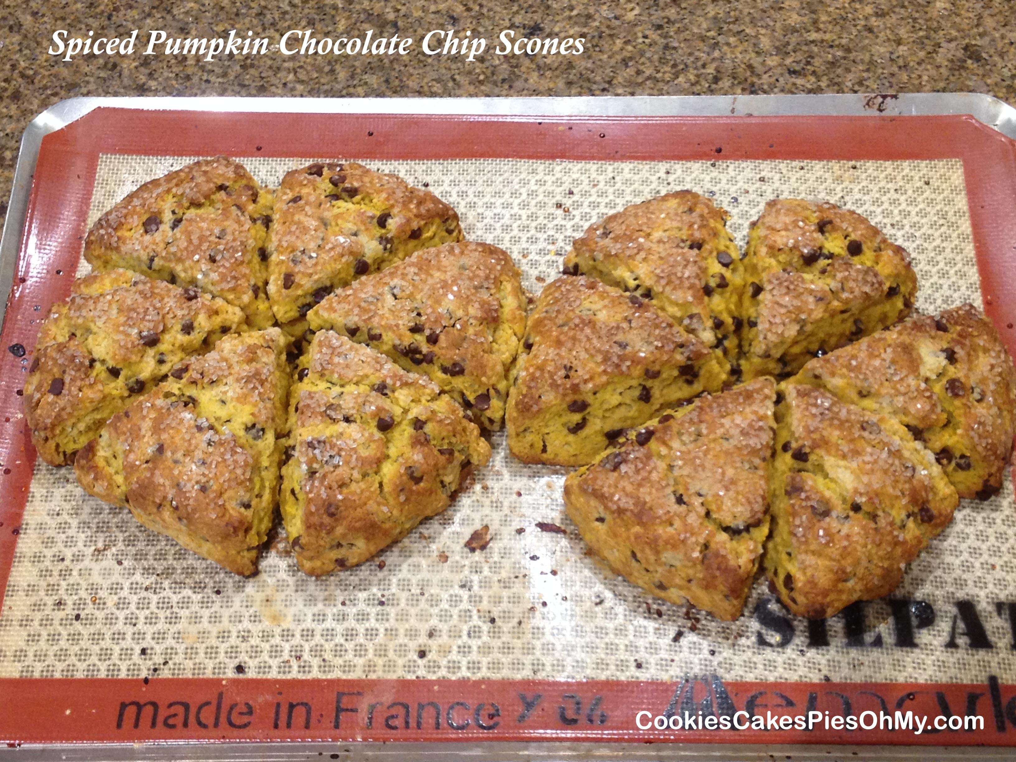 Spiced Pumpkin Chocolate Chip Scones | CookiesCakesPiesOhMy