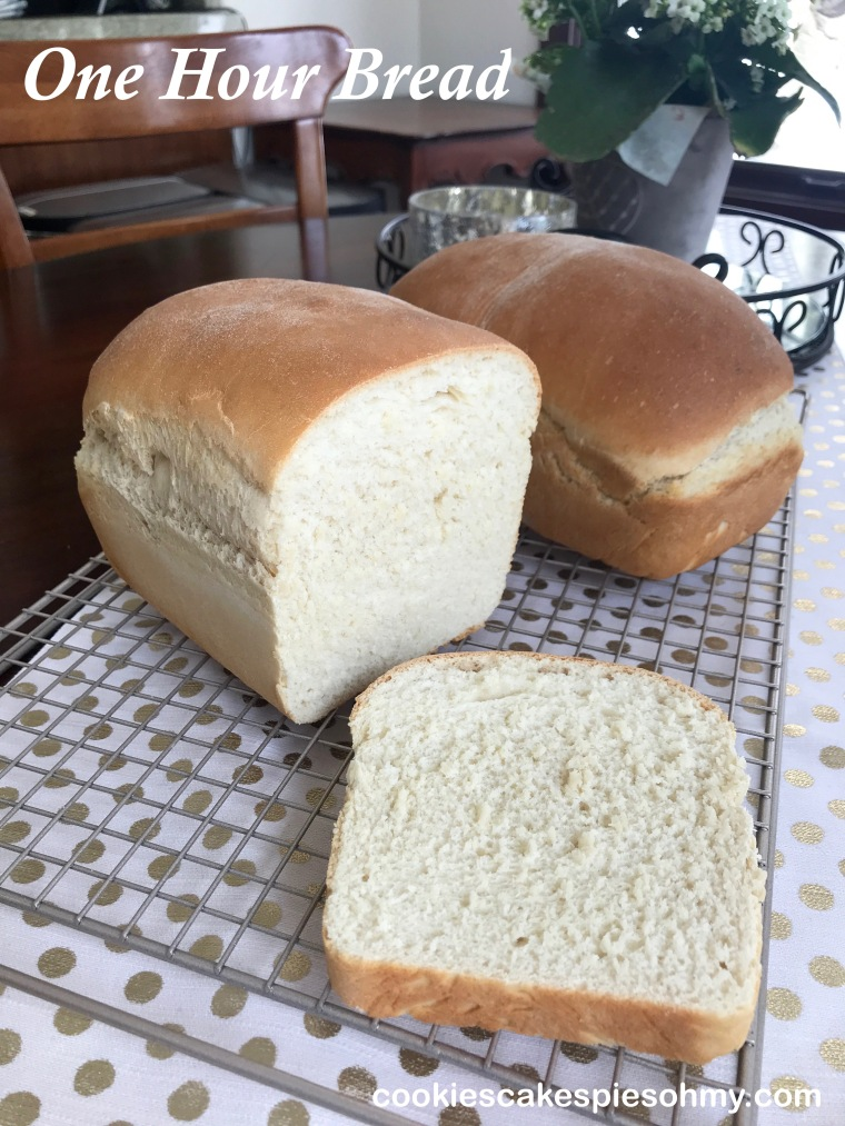 One Hour Bread 1